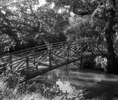 BW-_JTP-Bridge